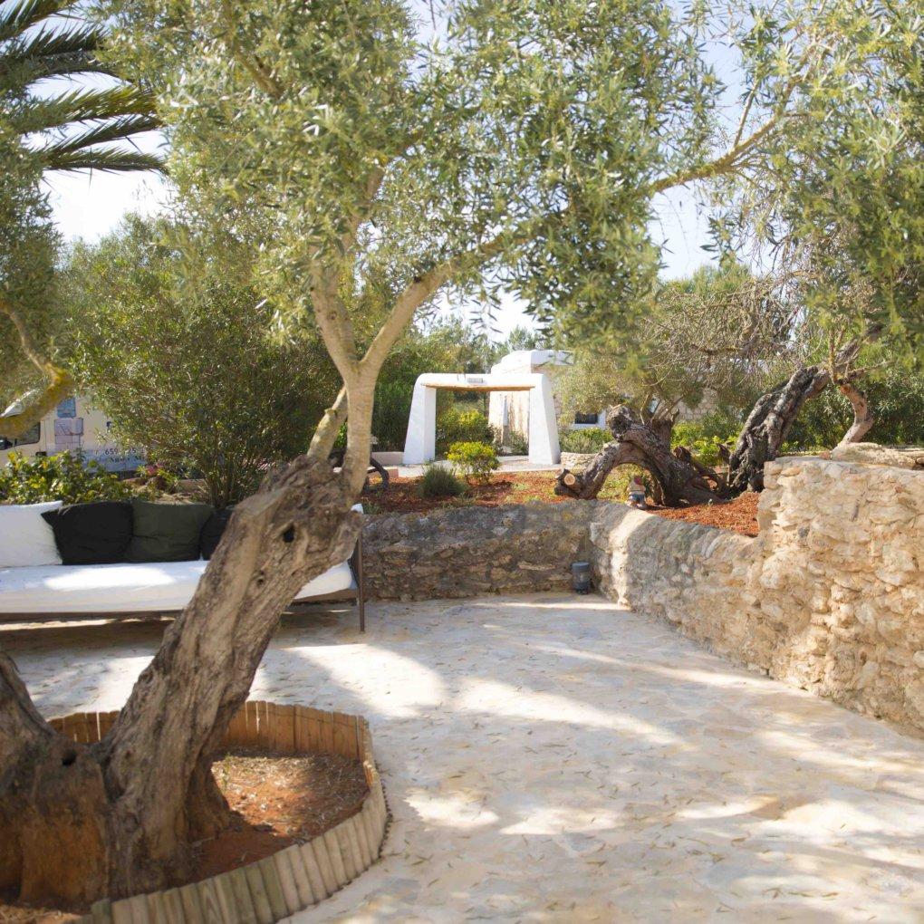 Agriculturo Ibiza