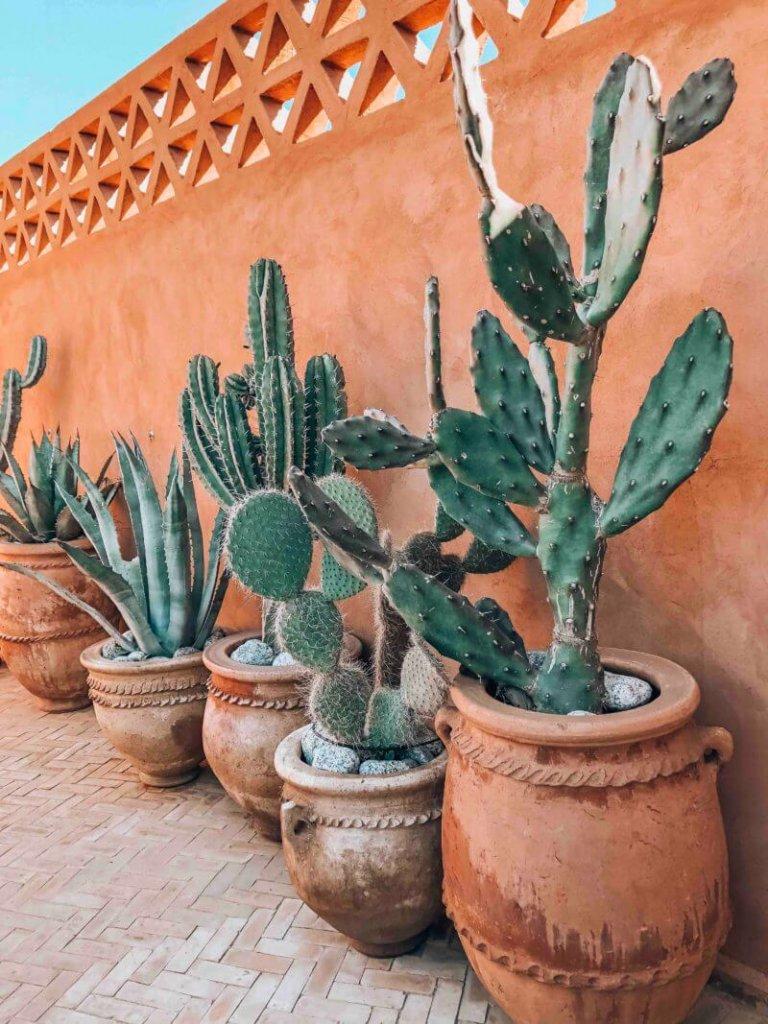 best Marrakech riad