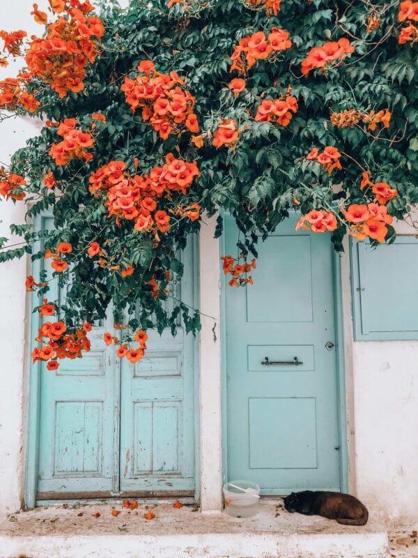 Mykonos worth visiting